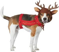 """New Cute Costume For Your Pet At Christmas! Soft Brown Hood With Attached Ears And Antlers Comes With A Red Harness That Has A Message """"Happy Howl-Idays""""! Bells Are Attached To The Harness For That Holiday Sound! Reindeer Horns, Reindeer Costume, Cute Costumes, Dog Costumes, Funny Dogs, Cute Dogs, California Costumes, Pet Steps, Pet Paws"""