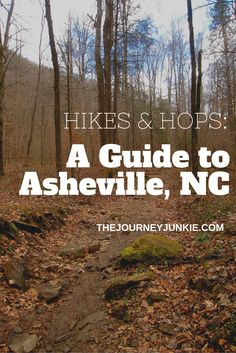 A Visit Asheville, NC guide from TheJournalJunkie.com (*** from a resident, this is limited, but is up to date, accurate and offers excellent suggestions for visitors).