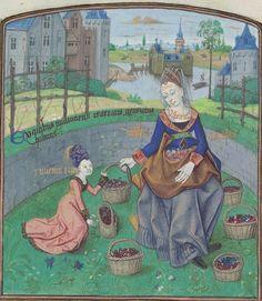 Les douze dames de rhétorique (MS Nn.3.2) - Bruges, Flanders Date of Creation: 1467-68 C.E. Language(s): French and Latin