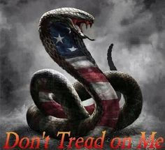 Don't tread on me!                                                                                                                                                                                 More