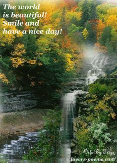 A lovely greeting I received from Patrick. This image reminds me of Little River Canyon in northern Alabama. Good Morning Gif Images, Good Morning Messages, Good Morning Greetings, Good Morning Quotes, Good Morning Dear Friend, Good Morning My Love, Morning Wish, Little River Canyon, Beautiful Gif