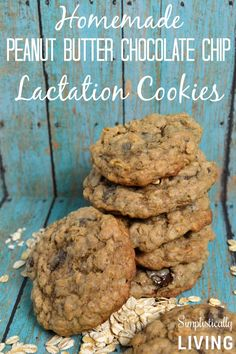 Homemade Peanut Butter Chocolate Chip Lactation Cookies- These are so delicious!