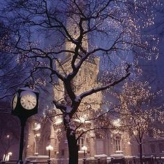 Christmas in Chicago <3 Love this city!!
