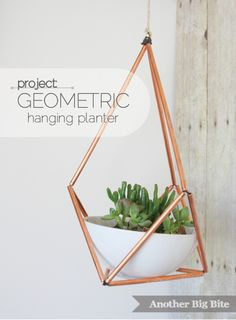 http://anotherbigbite.com/tag/triangle-planter/ Metal tube + String