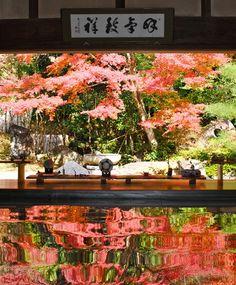 Jyufuku-ji, Nagasaki, Japan
