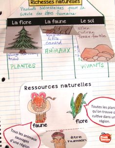 Les richesses naturelles des Algonquiens French Class, Learn French, Interactive Notebooks, Social Studies, Kids Learning, Projects To Try, Teaching, Plans, School Ideas