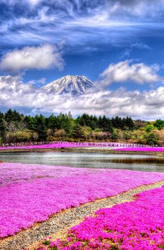 Mt. Fuji (HDR) by Andrew Chow