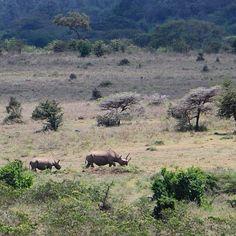 Nairobi, Mountains, Nature, Travel, Naturaleza, Viajes, Destinations, Traveling, Trips