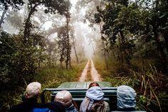 Chitwan National Park at Nepal