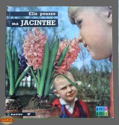 Livre Collection ... ELLE POUSSE MA JACINTHE (1965) ... sur www.mulubrok.fr