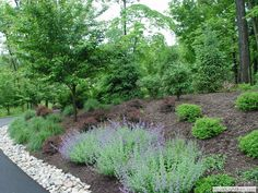 Landscaping a large area with a slope - New Jersey