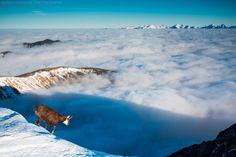 Nádherné fotky výhľadov z hôr z celého Slovenska – Sóda Mountains, Nature, Travel, Naturaleza, Viajes, Destinations, Traveling, Trips, Nature Illustration