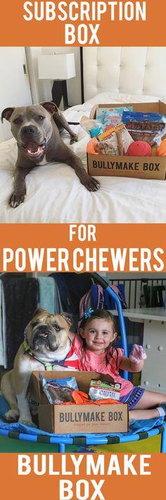 The perfect subscription box for POWER CHEWERS! http://bullymake.com/?utm_source=pinterest&utm_medium=pinterest-ads&utm_content=september-6&utm_campaign=september-6