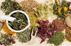 Природные антибиотики вместо лекарств - список самых эффективных трав, растений, ягод и специй