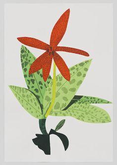 Jonas Wood. Orange Orchid Clipping, 2014. Courtesy of David Kordansky Gallery, Los Angeles