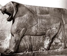 Sculpture of Lion, stone, Nimrud, Neo-Assyrian, 883-859 BCE