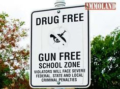 This Will Drive Gun-Grabbers Crazy  And Change Our Schools Forever