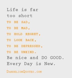 Life is far too short to be sad, to be mad, to hold regret, to look back, to be depressed, to be unkind. Be nice and DO GOOD. Every Day is New.
