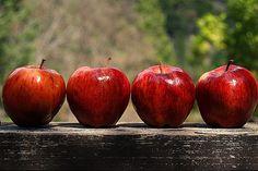 Simple centerpiece. Apples on wood block.