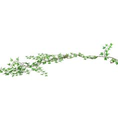 Get Mini Green Star Ivy Garland online or find other Garlands products from HobbyLobby.com