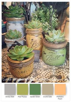 Home Decor Ideas with Mason Jars Chalk painted Ball jars as succulent house plant containers.Chalk painted Ball jars as succulent house plant containers. Mason Jar Succulents, Paper Succulents, Planting Succulents, Succulent Planters, Indoor Succulents, Hanging Planters, Succulent Decorations, Indoor Herbs, Succulent Ideas