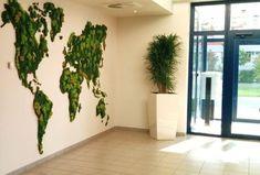 Zdjęcie numer 2 w galerii - Obrazy z mchu i kwiatów