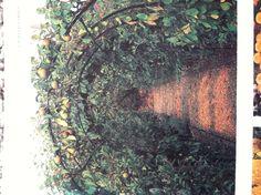 pear tunnels rosemary vereys good planting plans