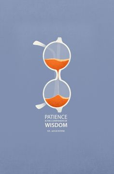 Patience is the companion of the wisdom.