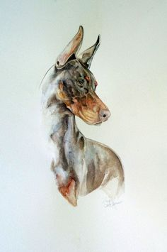 Doberman Pinscher Mixed media of watercolor with colored pencil. Signed giclee print on 12 x 18 watercolor paper. Dobermann Tattoo, Black And Tan Terrier, Canis Lupus, Doberman Pinscher Dog, Dog Shedding, Dog Paintings, Dog Art, Dog Life, Animal Drawings