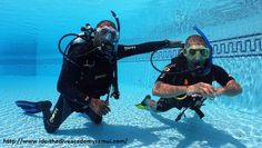 Diving Instructor Course Koh Tao is designed to teach current divemaster with dive training organization to prepare you to become a scuba instructor. Scuba dive is the first step to become a PADI open water scuba instructor. For you it is a key to start a new lifestyle and new carrer. http://www.idc-thediveacademysamui.com/divemaster-course-info.html