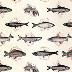 Fishes In Geometrics / speakernine