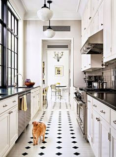 If I had to work with a galley style kitchen, this isn't bad, I'd just change the finishes and add in some gray subway tile and give it a warm industrial spin