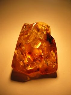 Lithuania Culture in Photos 101 - Photo Gallery of Lithuanian Culture: Lithuanian Amber - Amber from the Baltic Coast