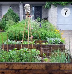 My Edible Front Garden. And How I Came Out As A Front Yard Veg Grower. - Empress of Dirt