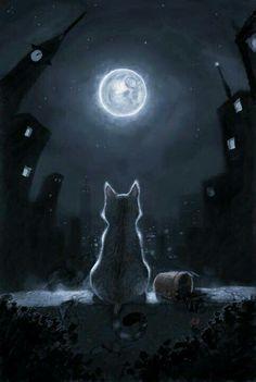 Luna..