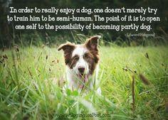 #DogPhilosophy
