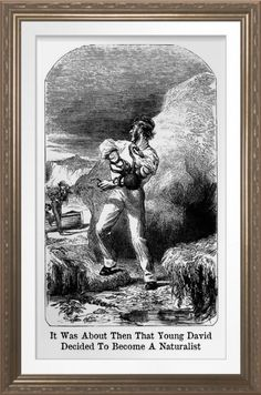 'Becoming A Naturalist' - Art Print. Vintage humor for your wall. One for the museum (?) or study. Reproduced on Archival Heavyweight Paper https://www.zazzle.com/becoming_a_naturalist_art_print-228968640909429965 #art #naturalist #museums #humor #humour #vintage