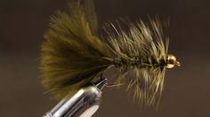 Olive Woolly Bugger | Tightline Productions | Vimeo