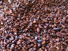 Updated August 23, 2016   Whole cacao beans are not always easy for the average consumer to find.  And when you do find them, the beans ne...