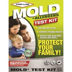First Alert Mold Test Kit Storm Ready Necessities 12 Hurricane Preparedness Home Types Of