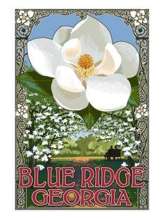 Blue Ridge, Georgia - Magnolia