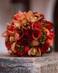 edes-november-kedvencek November, Flowers, Plants, Roses, Happy, November Born, Pink, Rose, Ser Feliz
