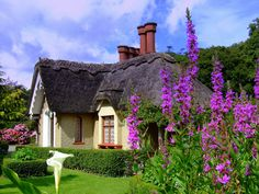 Thatched roof cottage in Killarney, Ireland