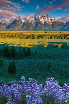 The most beautiful landscapes in the United States (50 pictures): Grand Tetons National Park Wyoming