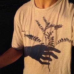 Imagen de shadow, plants, and grunge