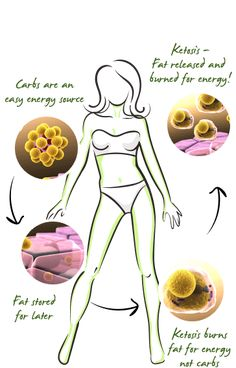 Just Keto Diet is a safe and effective weight loss supplement that helps in achieving ketosis and uses fat for energy. Low Fat Diets, No Carb Diets, Keto Approved Foods, Starting Keto Diet, Slim Diet, Ketosis Fast, Weight Loss Diet Plan, Weight Gain, How To Slim Down