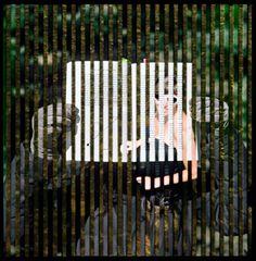 Parallel Multi-Narrative Photography : Isabel M Martinez