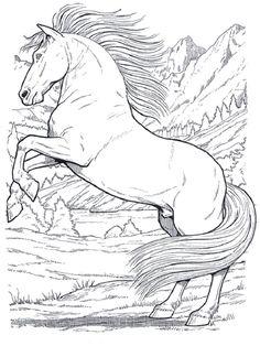 Ausmalbilder Pferde ausmalbildpferd on Pinterest