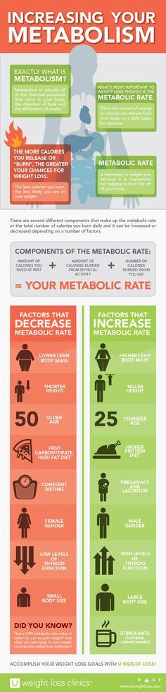 Increasing Your #Metabolism Infographic