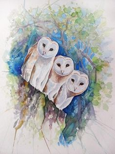 Watercolour painting of Three Curious White Owls by WatercoloursForSale on Etsy Oil Painting For Sale, Paintings For Sale, Watercolor Animals, Watercolour Painting, White Owls, Art Tutor, Red Tulips, Watercolours, Art Lessons
